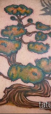 Фото тату бонсай – 19062017 – пример – 044 Bonsai tattoo – tatufoto.com