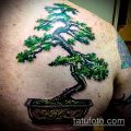 Фото тату бонсай - 19062017 - пример - 046 Bonsai tattoo - tatufoto.com