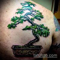 Значение тату бонсай