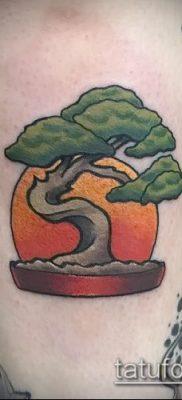 Фото тату бонсай – 19062017 – пример – 051 Bonsai tattoo – tatufoto.com