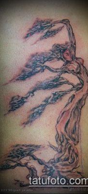 Фото тату бонсай – 19062017 – пример – 056 Bonsai tattoo – tatufoto.com