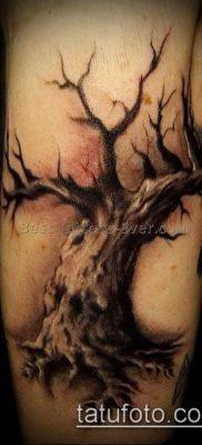 Фото тату бонсай – 19062017 – пример – 072 Bonsai tattoo – tatufoto.com 43222