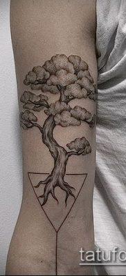 Фото тату бонсай – 19062017 – пример – 080 Bonsai tattoo – tatufoto.com