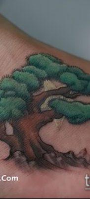 Фото тату бонсай – 19062017 – пример – 087 Bonsai tattoo – tatufoto.com 24222