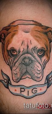 Фото тату бульдог – 03062017 – пример – 018 Bulldog tattoo