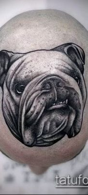 Фото тату бульдог – 03062017 – пример – 031 Bulldog tattoo