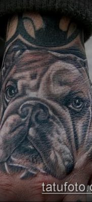 Фото тату бульдог – 03062017 – пример – 036 Bulldog tattoo