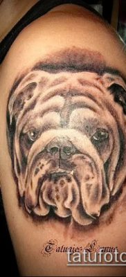 Фото тату бульдог – 03062017 – пример – 040 Bulldog tattoo