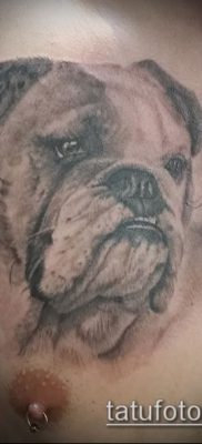 Фото тату бульдог – 03062017 – пример – 047 Bulldog tattoo