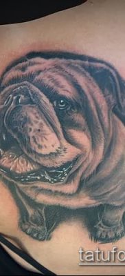 Фото тату бульдог – 03062017 – пример – 080 Bulldog tattoo