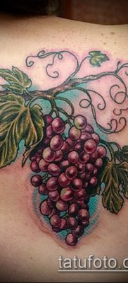Фото тату виноград – 20062017 – пример – 009 Tattoo grapes_tatufoto.com