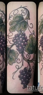 Фото тату виноград – 20062017 – пример – 013 Tattoo grapes_tatufoto.com