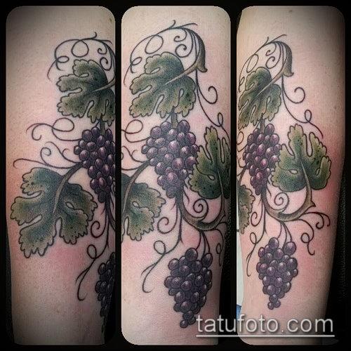 Фото тату виноград - 20062017 - пример - 013 Tattoo grapes_tatufoto.com