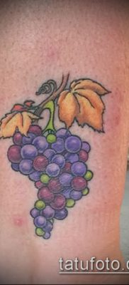 Фото тату виноград – 20062017 – пример – 017 Tattoo grapes_tatufoto.com