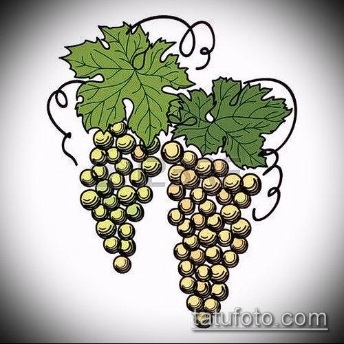 Фото тату виноград - 20062017 - пример - 024 Tattoo grapes_tatufoto.com