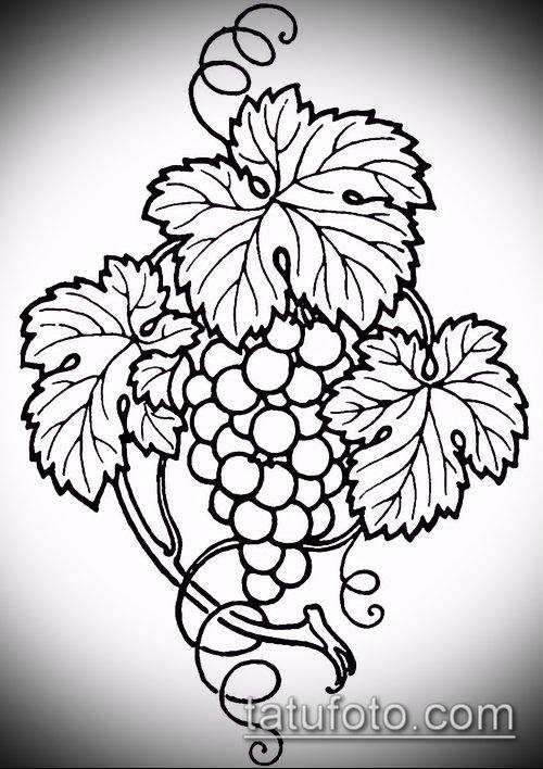 Фото тату виноград - 20062017 - пример - 040 Tattoo grapes_tatufoto.com