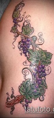 Фото тату виноград – 20062017 – пример – 045 Tattoo grapes_tatufoto.com