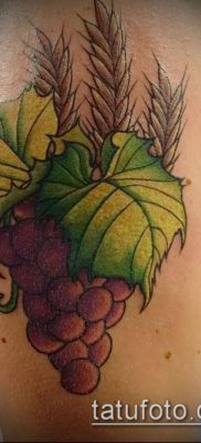 Фото тату виноград – 20062017 – пример – 052 Tattoo grapes_tatufoto.com
