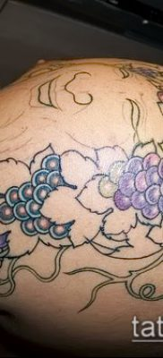 Фото тату виноград – 20062017 – пример – 082 Tattoo grapes_tatufoto.com