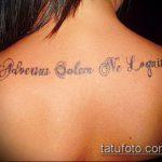 тату на латыни №657 - крутой вариант рисунка, который хорошо можно использовать для переработки и нанесения как тату на латыни о жизни