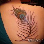 тату на спине №242 - достойный вариант рисунка, который легко можно использовать для доработки и нанесения как тату на спине надписи