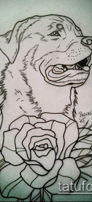 Фото тату ротвейлер – 06062017 – пример – 032 Rottweiler tattoo