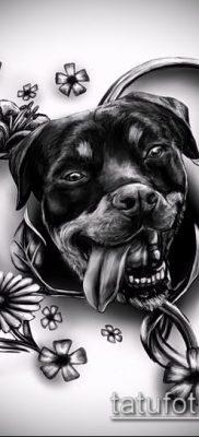 Фото тату ротвейлер – 06062017 – пример – 082 Rottweiler tattoo