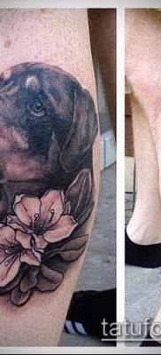 Фото тату ротвейлер – 06062017 – пример – 086 Rottweiler tattoo