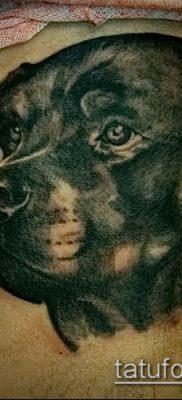 Фото тату ротвейлер – 06062017 – пример – 094 Rottweiler tattoo