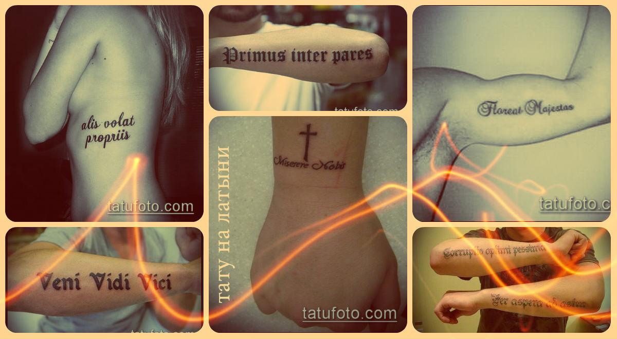 Тату на латыни (надписи) - коллекция примеров готовых татуировок на фото