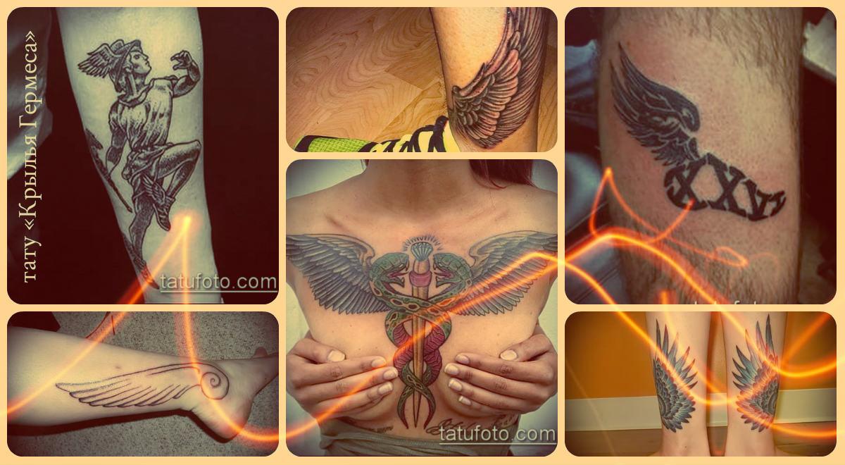 Значение тату Крылья Гермеса - фото примеры рисунков готовых татуировок