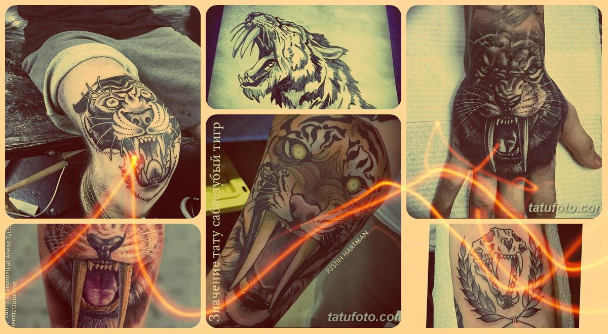 Значение тату саблезубый тигр - коллекция фото готовых татуировок