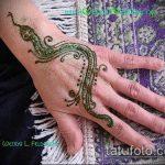 Фото змея хной - 21072017 - пример - 020 Snake with henna