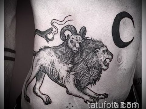 Фото тату химера - 11072017 - пример - 011 Chimera Tattoo