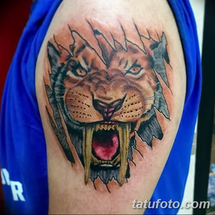 Значение тату саблезубый тигр