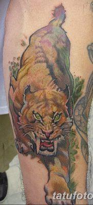 фото тату саблезубый тигр от 25.07.2017 №023 – Tattoo saber-toothed tiger
