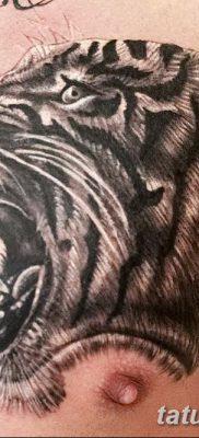фото тату саблезубый тигр от 25.07.2017 №041 – Tattoo saber-toothed tiger
