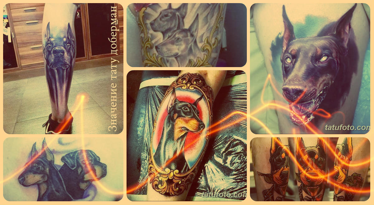 Значение тату доберман - фото примеры готовых татуировок