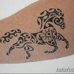 фото Временные тату от 12.08.2017 №010 - Temporary Tattoo_tatufoto.com
