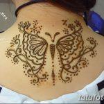 фото Мехенди бабочка от 01.08.2017 №060 - Mehendi Butterfly_tatufoto.com
