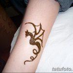 фото дракон хной от 02.08.2017 №027 - Dragon henna_tatufoto.com