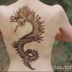 фото дракон хной от 02.08.2017 №038 - Dragon henna_tatufoto.com