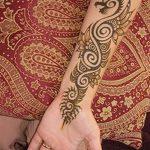 фото дракон хной от 02.08.2017 №044 - Dragon henna_tatufoto.com