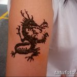 фото дракон хной от 02.08.2017 №061 - Dragon henna_tatufoto.com