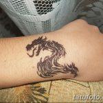 фото дракон хной от 02.08.2017 №067 - Dragon henna_tatufoto.com