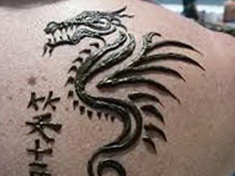 фото дракон хной от 02.08.2017 №100 - Dragon henna_tatufoto.com