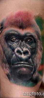 фото тату горилла от 27.08.2017 №001 – Gorilla tattoo – tatufoto.com
