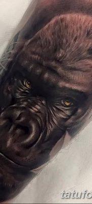 фото тату горилла от 27.08.2017 №004 – Gorilla tattoo – tatufoto.com
