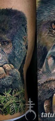 фото тату горилла от 27.08.2017 №005 – Gorilla tattoo – tatufoto.com