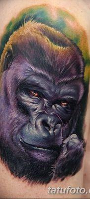 фото тату горилла от 27.08.2017 №009 – Gorilla tattoo – tatufoto.com